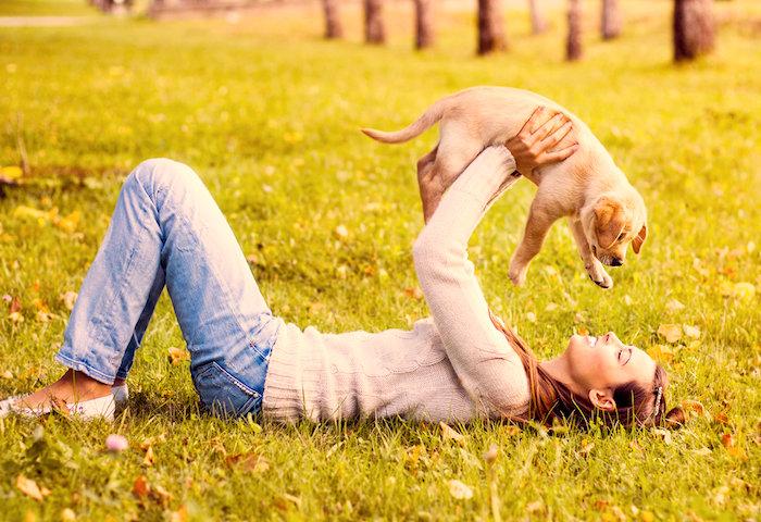 Preguntas comunes de duenos de perros