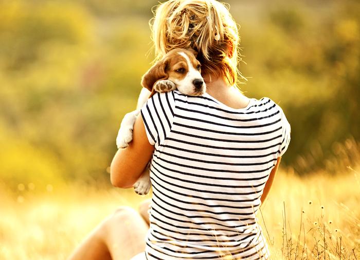 Poseer una mascota conduce a un corazon mas saludable