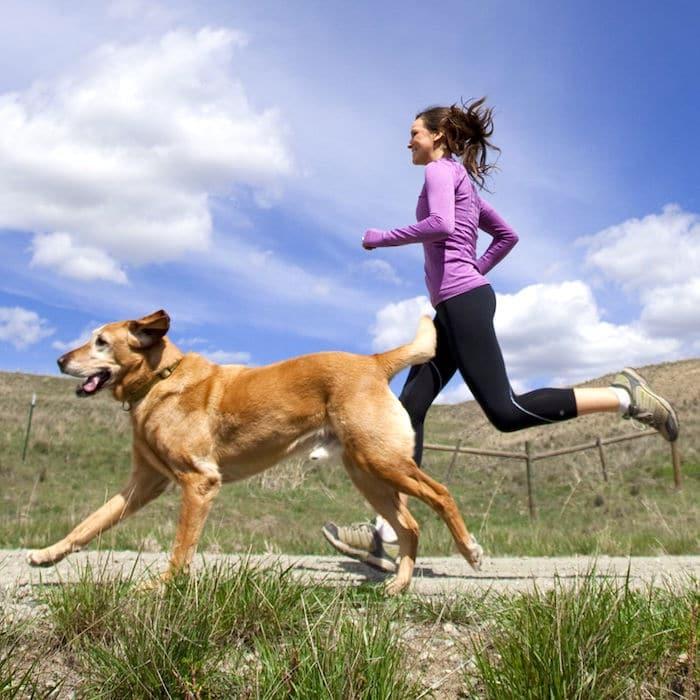 Lo que se debe y no se debe hacer al correr con tu perro