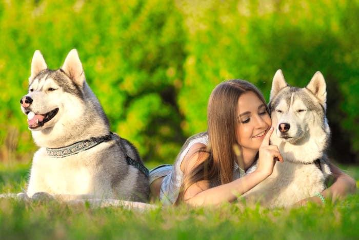 Cuando tienes una pata fría: celos en los perros