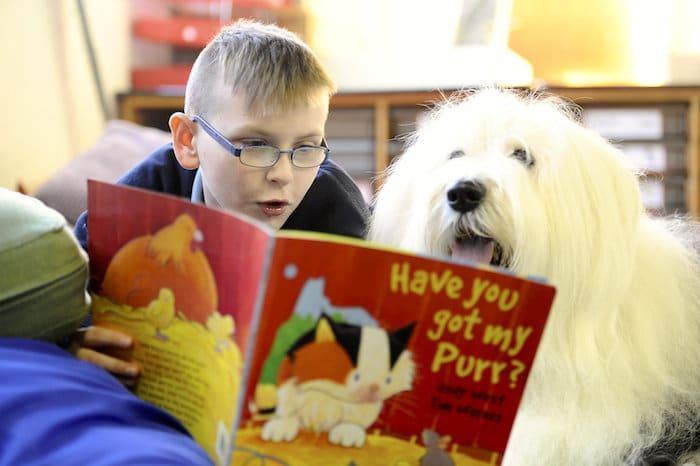 Perros que ayudan a los niños a leer