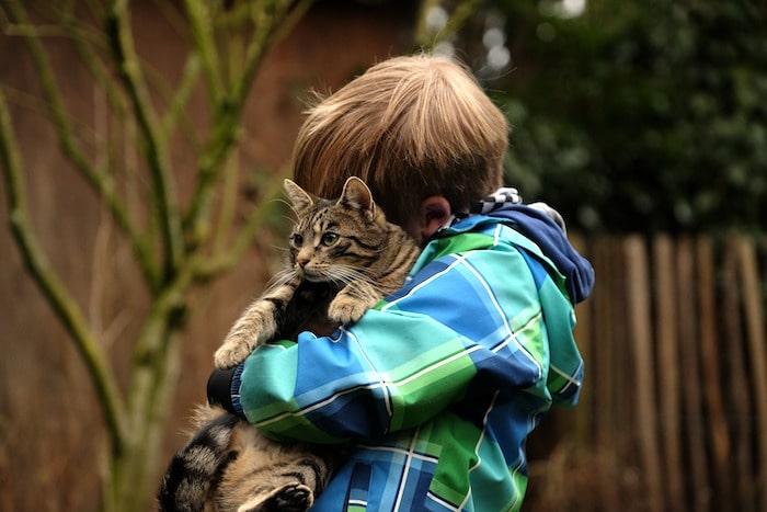¿Pueden los gatos ayudar a los niños en el espectro del autismo?