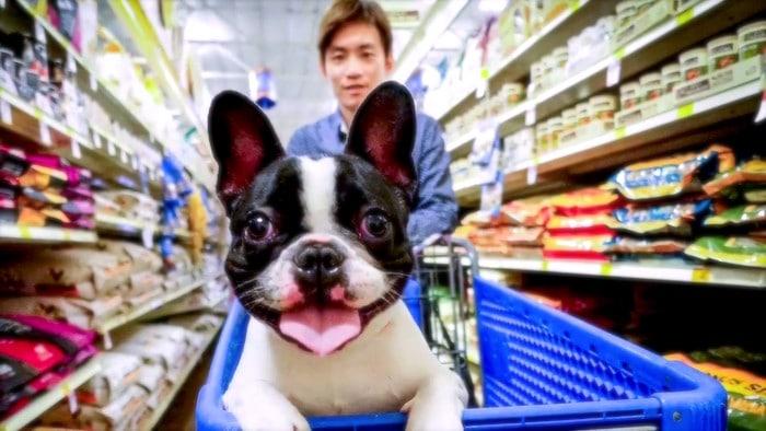 Etiquetas de comida para mascotas