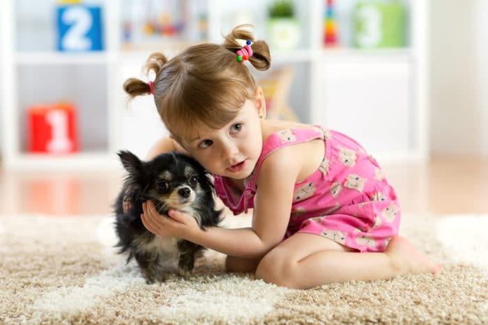 Perros con miedo a los niños