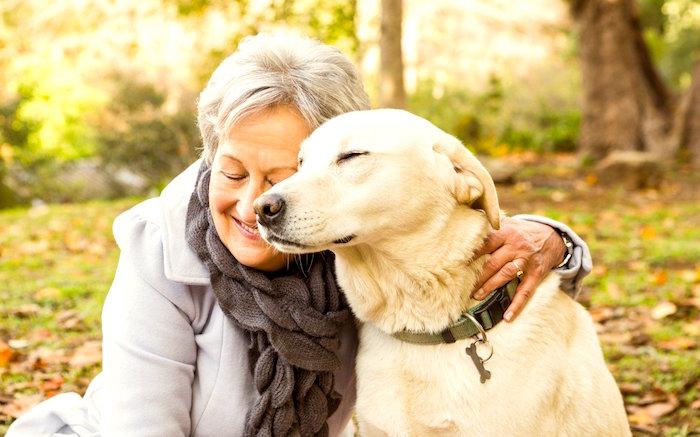 Cómo pueden ayudar las mascotas a los pacientes con artritis reumatoide