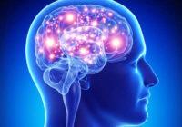 Los mejores suplementos para el cerebro