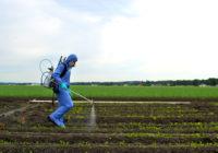 Beneficios del uso de pesticidas