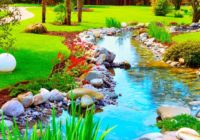 Terapia de alivio de estrés natural