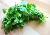 Cuales son los beneficios del cilantro