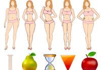 Proporcion sana entre la cadera y la cintura