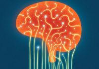 Alivie el estrés mental utilizando la última psicología del cerebro