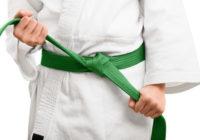 Niveles de cinturón de karate