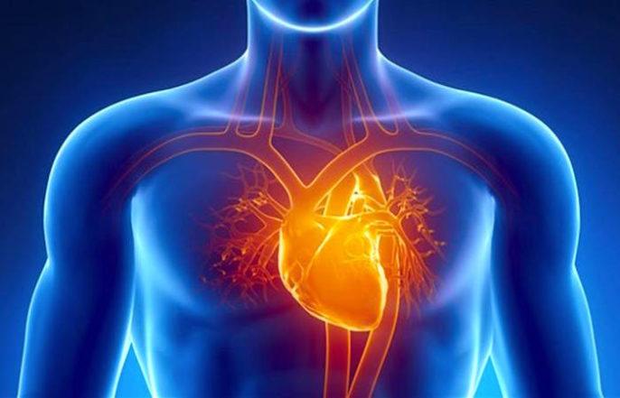 Causas del paro cardíaco
