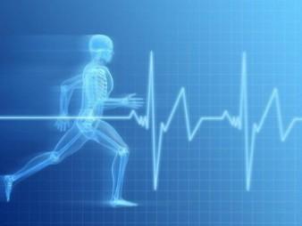 Cómo seleccionar el complemento adecuado para apoyar la salud óptima Nutrición Deportiva