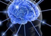 Auswirkungen von Lebensmitteln auf die psychische Gesundheit