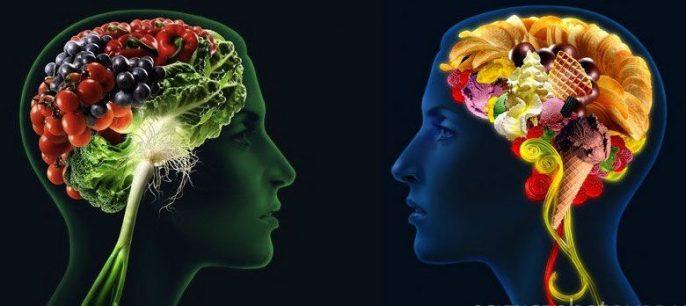 El cerebro controla lo que comemos