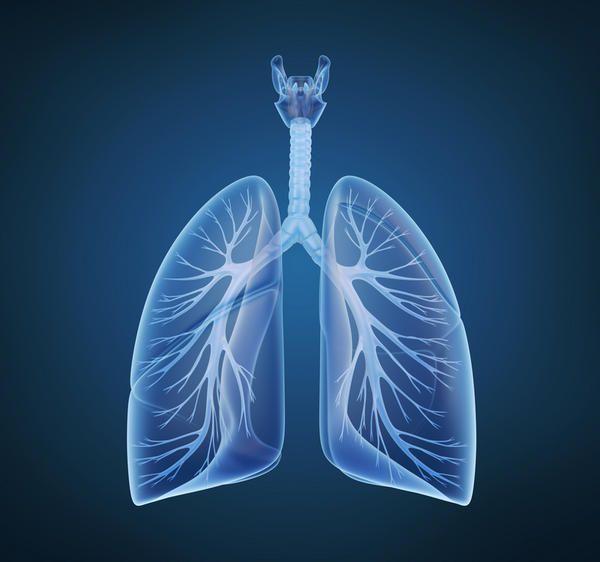 Fibrose cística: Faz com que , fatores de risco , tratamento