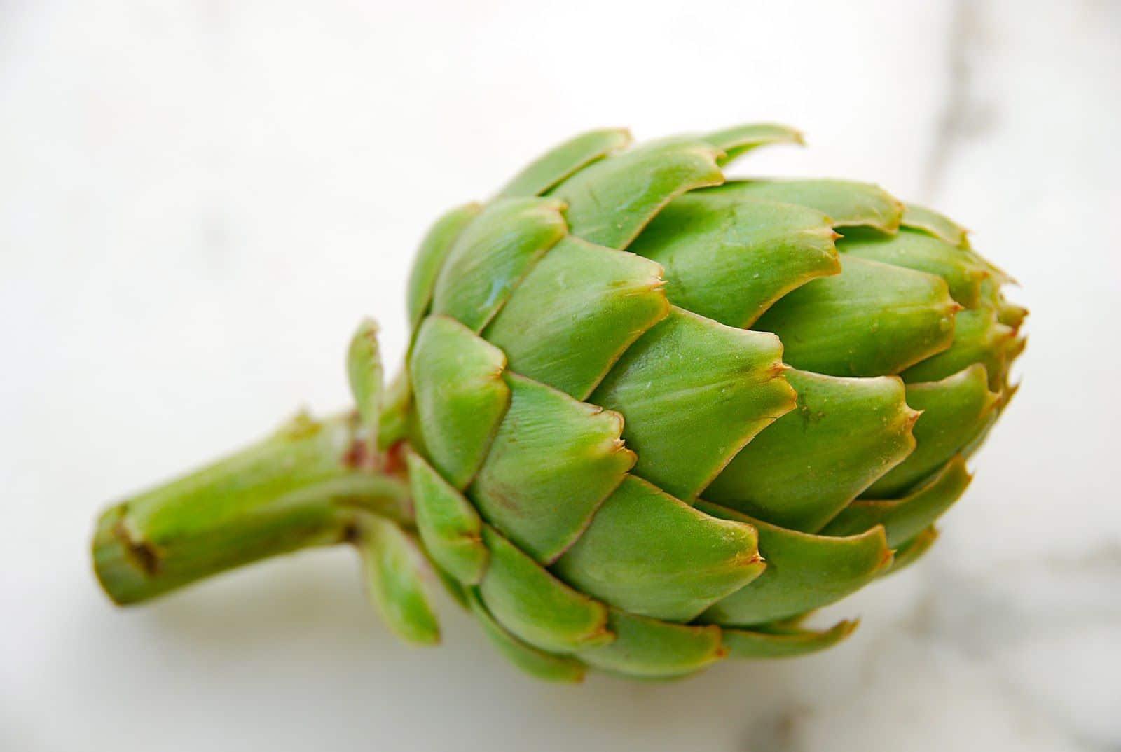 आटिचोक: प्राकृतिक एंटीऑक्सीडेंट के प्रावधान में एक अग्रणी भूमिका के साथ एक फूल
