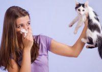 对猫和狗过敏