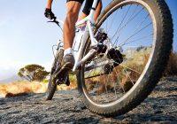 Ciclismo y sus efectos saludales en nuestros cuerpo
