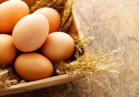 Dieta de ovo