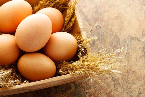 अंडा आहार