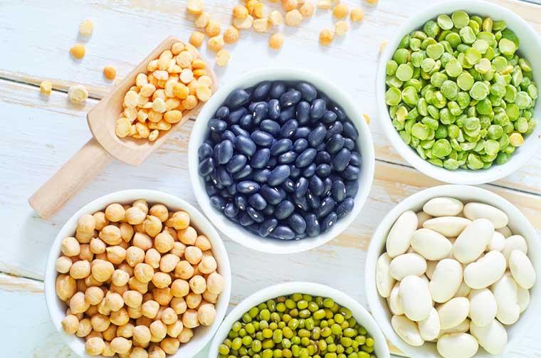 sources de protéines pour les végétariens