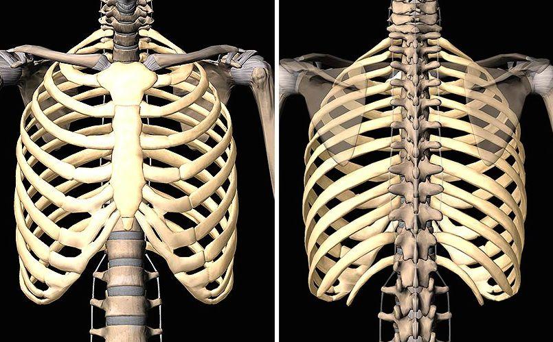 Costocondritis: Síntomas y tratamiento - El Blog de la