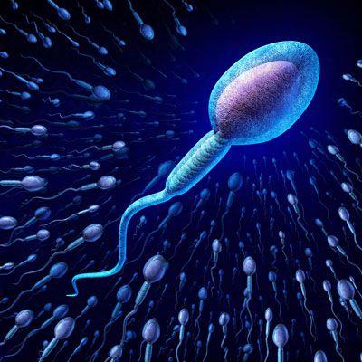 Plodnost: Najboljša starost za moške in ženske