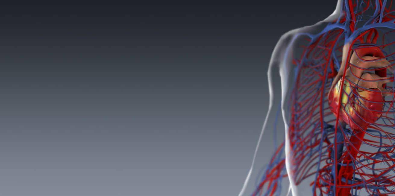réduire le cholestérol , prévenir les maladies cardiaques