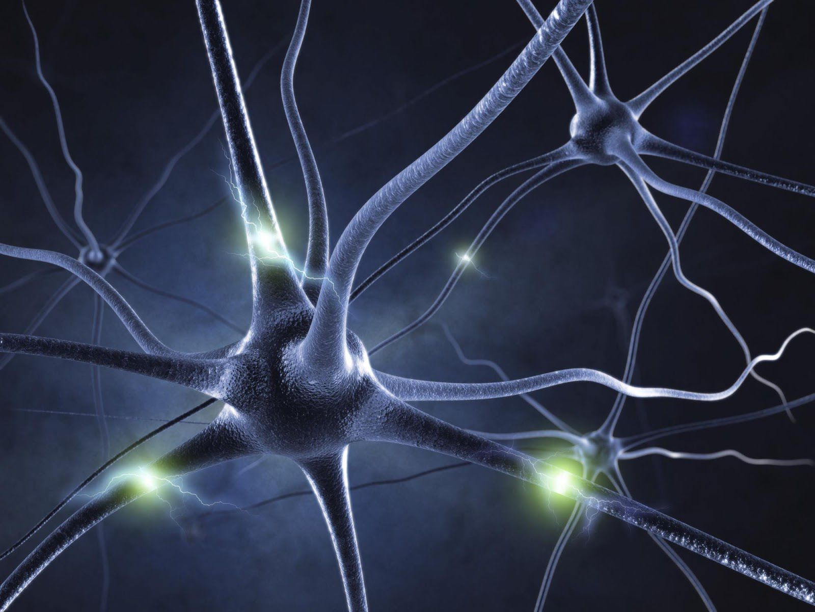 remédios naturais para a doença de Parkinson