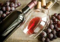 probióticos en el vino