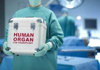 Donación de órganos de bebé