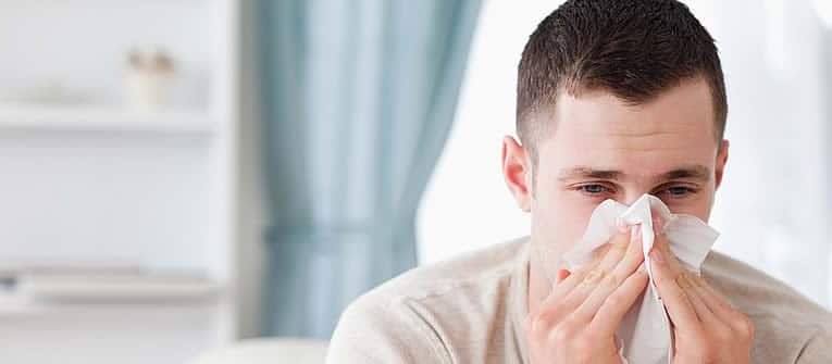evitar los alergenos