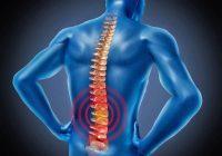您可以轻松避免的腰痛的触发器