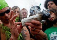 التدخين الاعشاب يؤثر سلبا على شخص ما