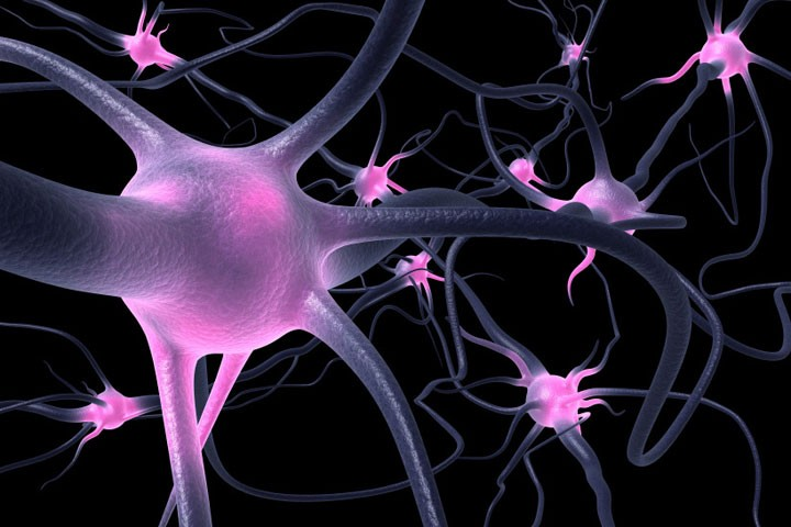 Tratamiento Bioelectromagnética
