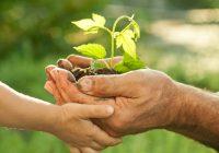Naturopatía y auto-sanación
