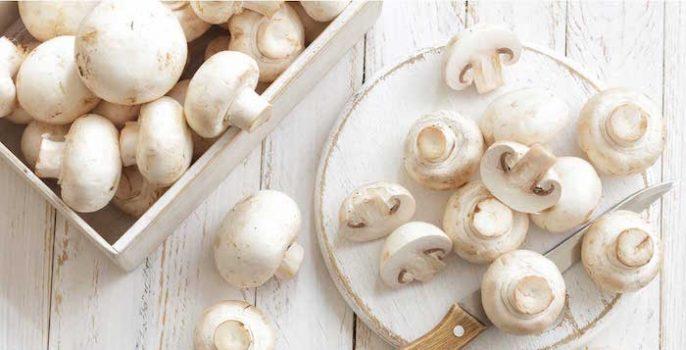 Pilze: nahrhaft, gesund und ... ist der Schlüssel zum Abnehmen?