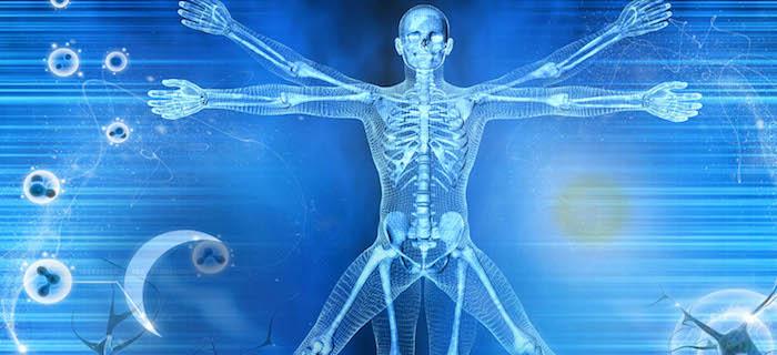 Chronobiologie: La nouvelle science de la façon dont l'heure du jour affecte le fonctionnement de votre corps