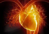 """Das Gefühl von Unebenheiten in Ihrem Herzen wird als """"Herzklopfen"""" bezeichnet und ist oft harmlos"""