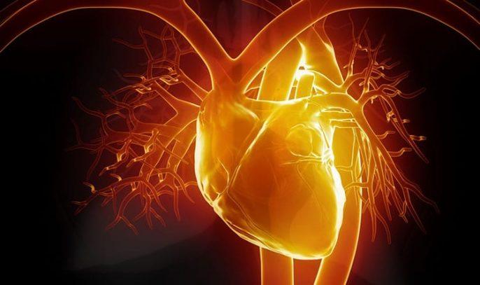 """Sensación de golpes en su corazón se llaman """"palpitaciones"""" y es a menudo inofensivo"""