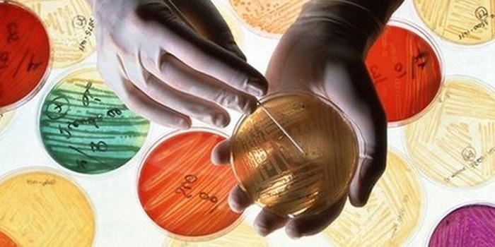 怎样才能在世界上的邮政 antibiotica 时间尖点负责病人