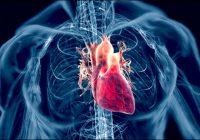 La evidencia de que las estatinas estimula la arteriosclerosis y la insuficiencia cardíaca