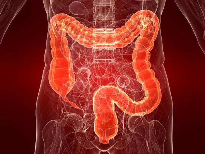 直肠粘液分泌量可以是生理