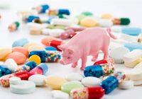 Cómo la industria de la carne contribuye a la resistencia a los antibióticos