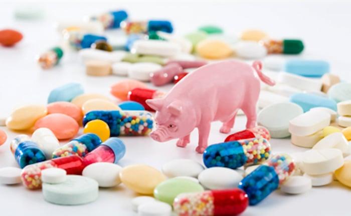 Como a indústria da carne contribui para a resistência aos antibióticos