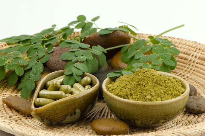 Moringa est une plante de grande, mais ce n'est pas un remède contre le diabète