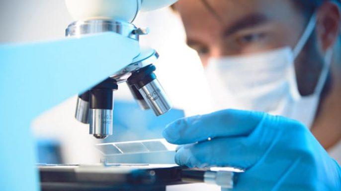 Livrar-se de certas células e viver uma vida mais longa