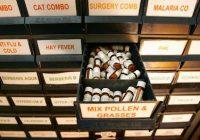 Wie Homöopathie wirklich helfen und manchmal Darmkrebs heilen kann
